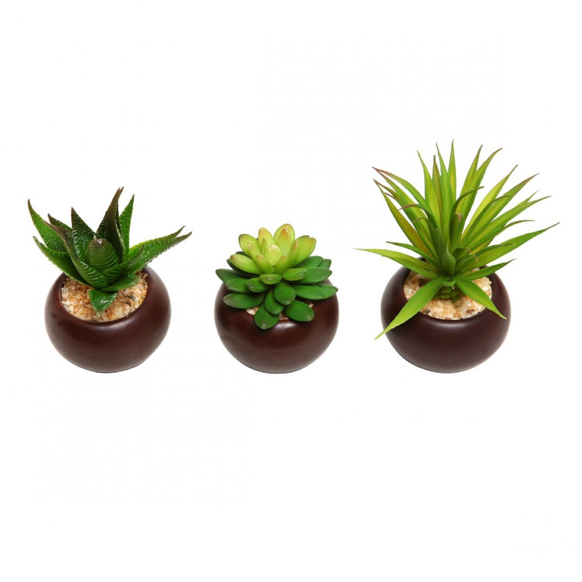 new potted artificial mini succulent plants set of 3. Black Bedroom Furniture Sets. Home Design Ideas