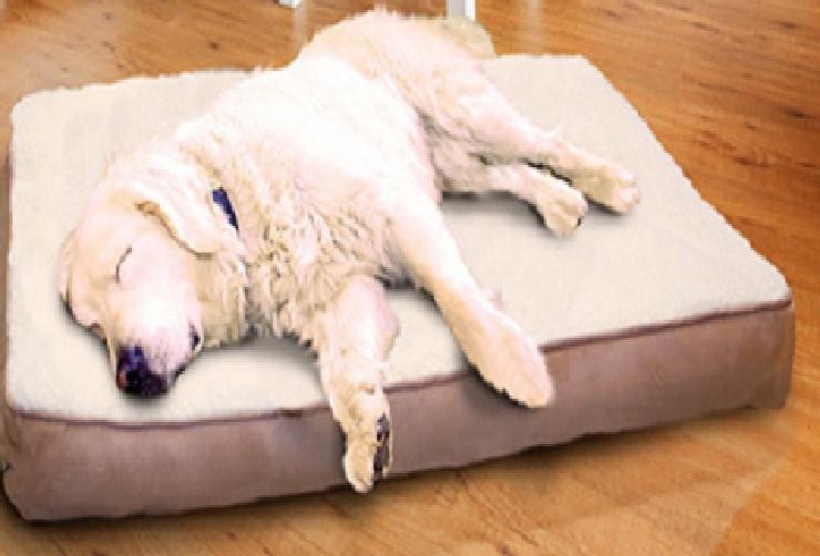 large orthopedic foam dog bed removable cover sleeping mattress ebay. Black Bedroom Furniture Sets. Home Design Ideas
