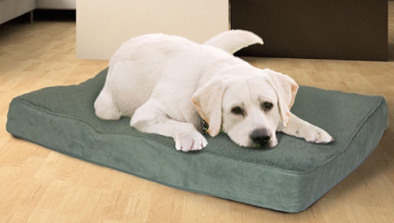 orthopedic foam dog bed sleeping mattress removable cover large. Black Bedroom Furniture Sets. Home Design Ideas