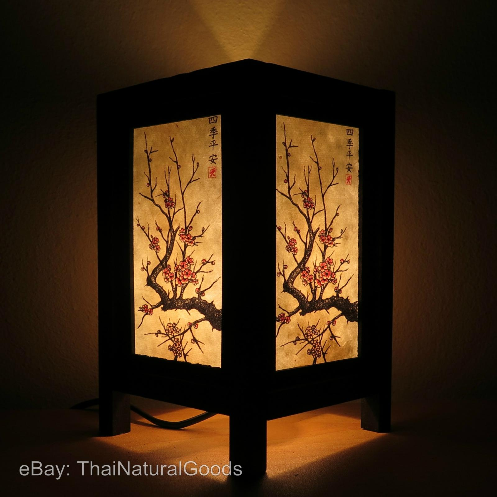 Asian night light temptation 9