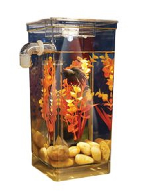 how to make my own fish tank