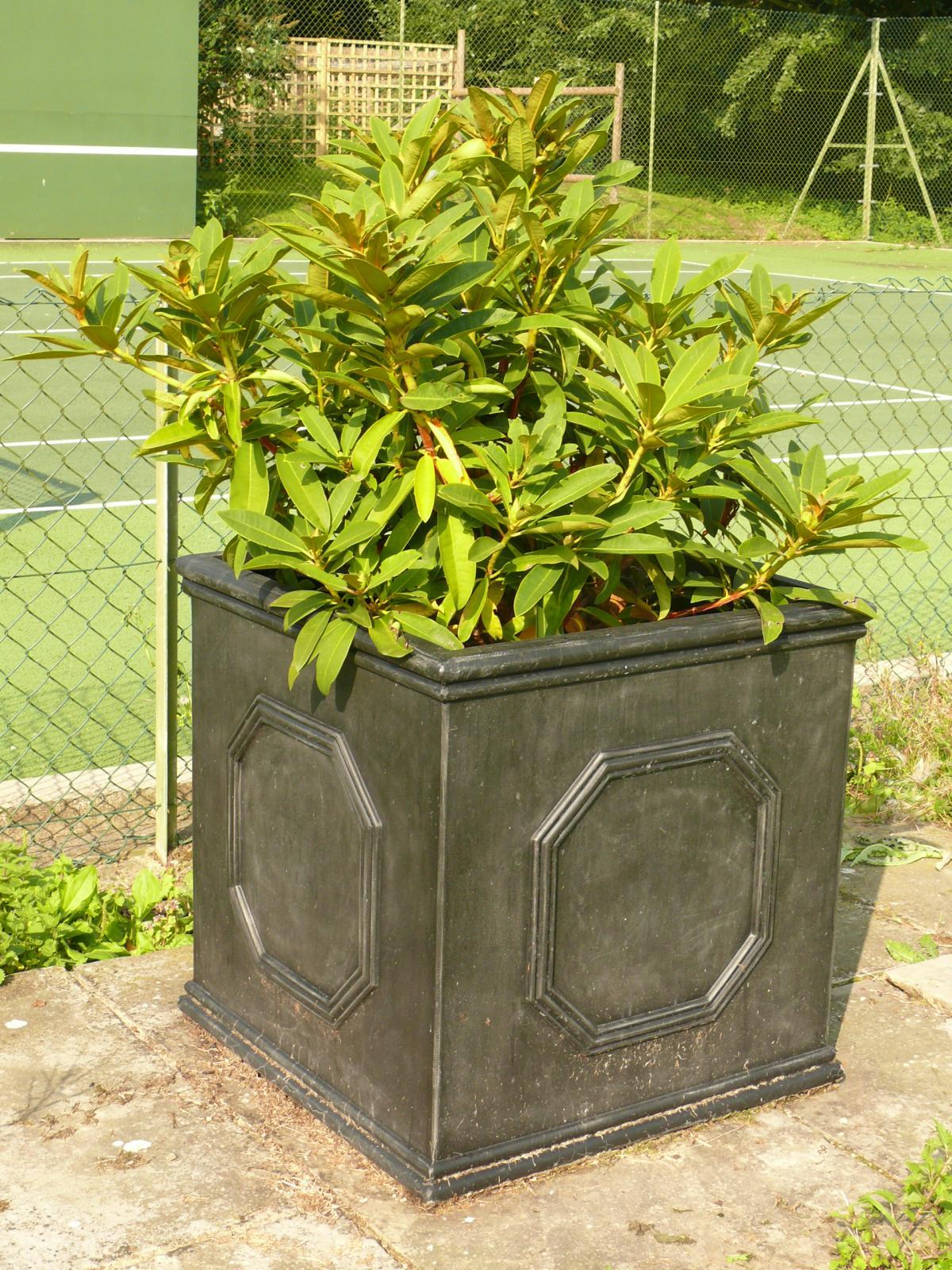 Large plant pot 55cm garden planter chelsea cube lead for Outdoor decorative plants