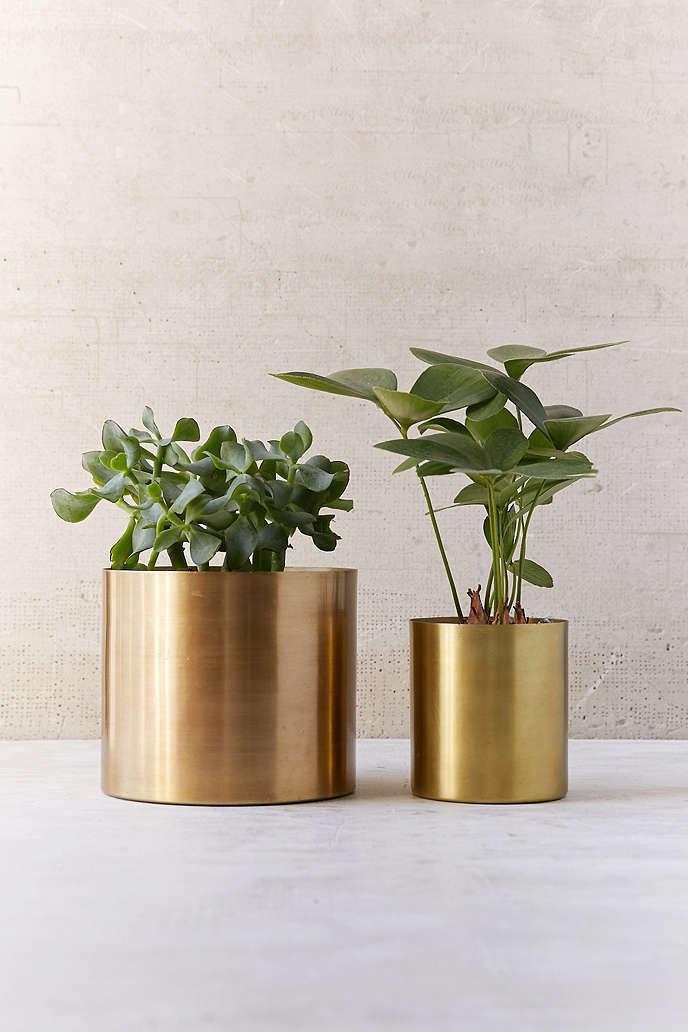 Small Metal Gold Cactus Succulent Pot Planter Indoor Plant